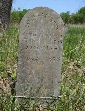 BARNES, WILLIAM ELIJAH - Newton County, Arkansas | WILLIAM ELIJAH BARNES - Arkansas Gravestone Photos