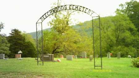 *BEECHWOODS CEMETERY ENTRANCE,  - Newton County, Arkansas |  *BEECHWOODS CEMETERY ENTRANCE - Arkansas Gravestone Photos