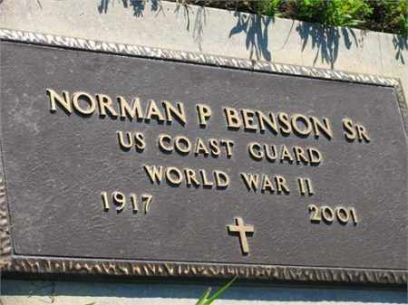 BENSON, SR (VETERAN WWII), NORMAN P - Newton County, Arkansas | NORMAN P BENSON, SR (VETERAN WWII) - Arkansas Gravestone Photos