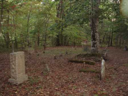 *CLAYBORN CEMETERY OVERVIEW,  - Newton County, Arkansas |  *CLAYBORN CEMETERY OVERVIEW - Arkansas Gravestone Photos