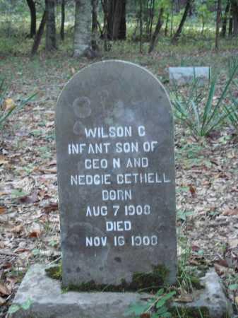 BETHELL, WILSON C. - Newton County, Arkansas | WILSON C. BETHELL - Arkansas Gravestone Photos