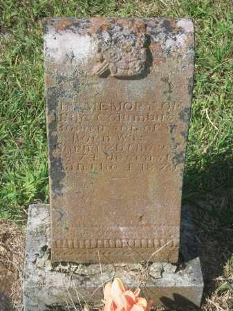 BOEN, ISAAC COLUMBUS - Newton County, Arkansas | ISAAC COLUMBUS BOEN - Arkansas Gravestone Photos