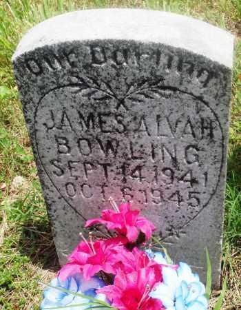 BOWLING, JAMES ALVAH - Newton County, Arkansas | JAMES ALVAH BOWLING - Arkansas Gravestone Photos