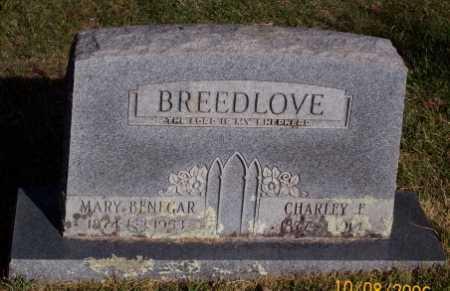 BENEGAR BREEDLOVE, MARY - Newton County, Arkansas | MARY BENEGAR BREEDLOVE - Arkansas Gravestone Photos