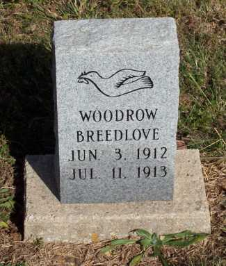 BREEDLOVE, WOODROW - Newton County, Arkansas | WOODROW BREEDLOVE - Arkansas Gravestone Photos