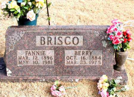 BRISCO, BERRY - Newton County, Arkansas | BERRY BRISCO - Arkansas Gravestone Photos