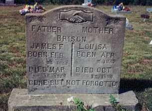 BRISON, JAMES F. - Newton County, Arkansas | JAMES F. BRISON - Arkansas Gravestone Photos