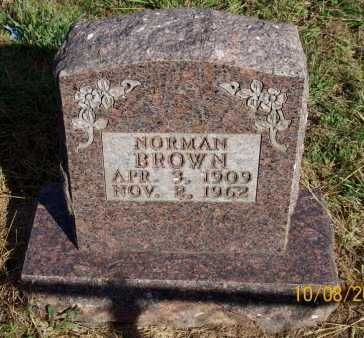 BROWN, NORMAN - Newton County, Arkansas | NORMAN BROWN - Arkansas Gravestone Photos