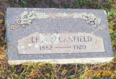 CANFIELD, LETA M. - Newton County, Arkansas | LETA M. CANFIELD - Arkansas Gravestone Photos