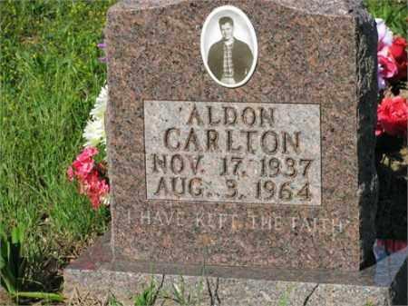 CARLTON, ALDON - Newton County, Arkansas | ALDON CARLTON - Arkansas Gravestone Photos