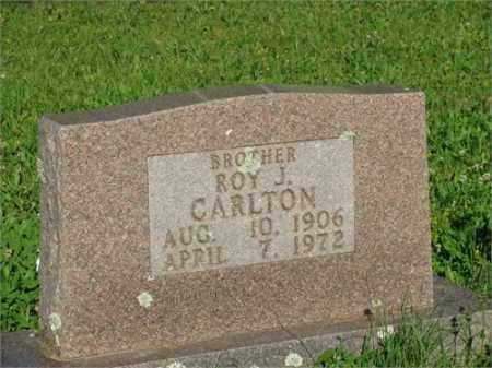 CARLTON, ROY J. - Newton County, Arkansas | ROY J. CARLTON - Arkansas Gravestone Photos