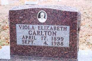 NEAL CARLTON, VIOLA ELIZABETH - Newton County, Arkansas | VIOLA ELIZABETH NEAL CARLTON - Arkansas Gravestone Photos