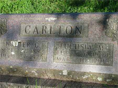 CARLTON, FUCHSIA M. - Newton County, Arkansas | FUCHSIA M. CARLTON - Arkansas Gravestone Photos