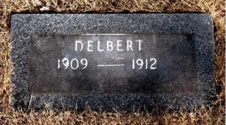 CARTER, DELBERT - Newton County, Arkansas | DELBERT CARTER - Arkansas Gravestone Photos