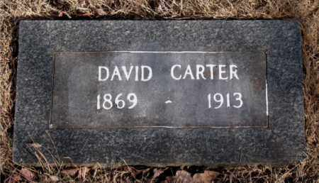 CARTER, DAVID - Newton County, Arkansas | DAVID CARTER - Arkansas Gravestone Photos
