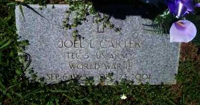 CARTER  (VETERAN WWII), JOEL L - Newton County, Arkansas | JOEL L CARTER  (VETERAN WWII) - Arkansas Gravestone Photos