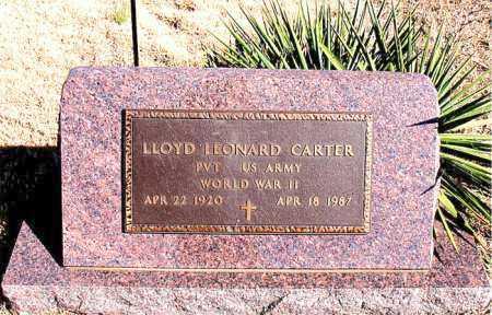 CARTER  (VETERAN WWII), LLOYD LEONARD - Newton County, Arkansas | LLOYD LEONARD CARTER  (VETERAN WWII) - Arkansas Gravestone Photos