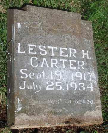 CARTER, LESTER H - Newton County, Arkansas | LESTER H CARTER - Arkansas Gravestone Photos