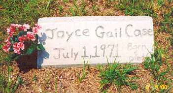CASE, JOYCE GAIL - Newton County, Arkansas | JOYCE GAIL CASE - Arkansas Gravestone Photos