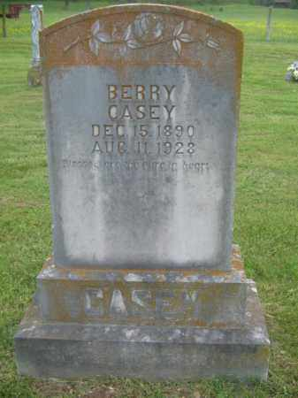 CASEY, BERRY - Newton County, Arkansas | BERRY CASEY - Arkansas Gravestone Photos