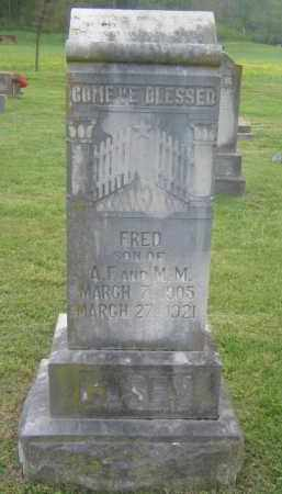 CASEY, FRED - Newton County, Arkansas | FRED CASEY - Arkansas Gravestone Photos