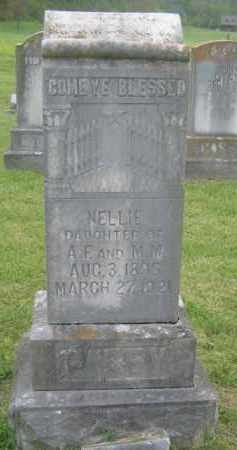 CASEY, NELLIE - Newton County, Arkansas | NELLIE CASEY - Arkansas Gravestone Photos