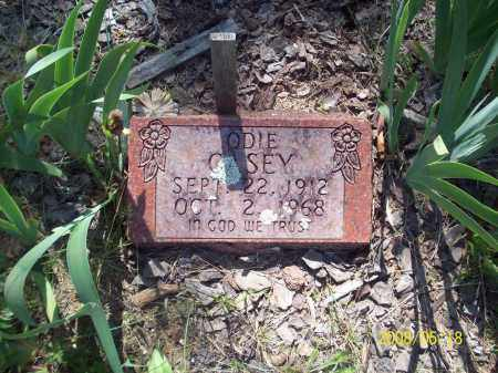 CASEY, ODIE - Newton County, Arkansas | ODIE CASEY - Arkansas Gravestone Photos