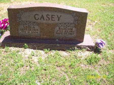 CASEY, RICHARD BASCUM - Newton County, Arkansas | RICHARD BASCUM CASEY - Arkansas Gravestone Photos