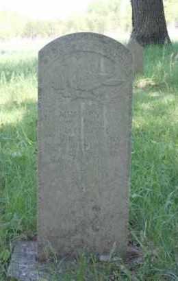 CECIL, NANCY - Newton County, Arkansas | NANCY CECIL - Arkansas Gravestone Photos