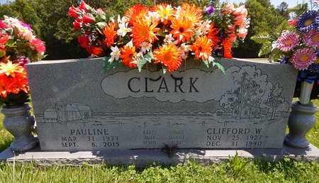 CLARK, CLIFFORD W. - Newton County, Arkansas | CLIFFORD W. CLARK - Arkansas Gravestone Photos