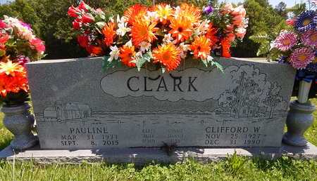 CLARK, CLIFFORD W. - Newton County, Arkansas | CLIFFORD W. CLARK - Arkansas Gravestone Photos