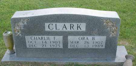 CLARK, CHARLIE F. - Newton County, Arkansas | CHARLIE F. CLARK - Arkansas Gravestone Photos