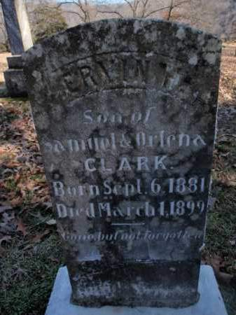CLARK, ERVIN B. - Newton County, Arkansas | ERVIN B. CLARK - Arkansas Gravestone Photos