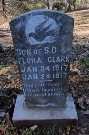 CLARK, INFANT SON - Newton County, Arkansas | INFANT SON CLARK - Arkansas Gravestone Photos
