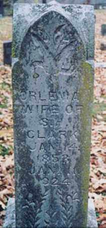 NEWBERRY CLARK, ORLENA - Newton County, Arkansas | ORLENA NEWBERRY CLARK - Arkansas Gravestone Photos