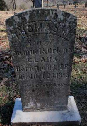 CLARK, THOMAS M. - Newton County, Arkansas | THOMAS M. CLARK - Arkansas Gravestone Photos
