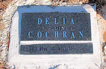 VILLINES COCHRAN, DELIA - Newton County, Arkansas | DELIA VILLINES COCHRAN - Arkansas Gravestone Photos
