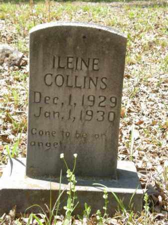 COLLINS, ILEINE - Newton County, Arkansas | ILEINE COLLINS - Arkansas Gravestone Photos