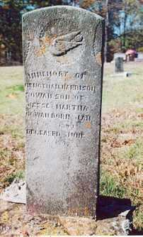 COWAN, BENJAMIN HARRISON - Newton County, Arkansas | BENJAMIN HARRISON COWAN - Arkansas Gravestone Photos