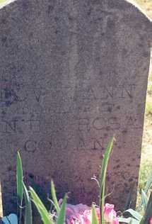 COWAN, DOVIE ANN - Newton County, Arkansas | DOVIE ANN COWAN - Arkansas Gravestone Photos