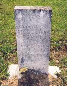COWAN, EVA - Newton County, Arkansas   EVA COWAN - Arkansas Gravestone Photos