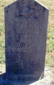 COWAN, JASPER NEWTON - Newton County, Arkansas | JASPER NEWTON COWAN - Arkansas Gravestone Photos