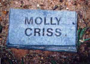CRISS, MOLLY - Newton County, Arkansas | MOLLY CRISS - Arkansas Gravestone Photos