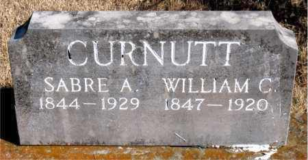 CURNUTT, WILLIAM C. - Newton County, Arkansas | WILLIAM C. CURNUTT - Arkansas Gravestone Photos