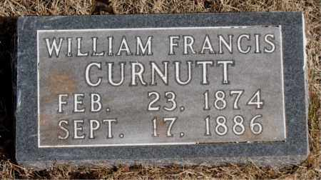 CURNUTT, WILLIAM FRANCIS - Newton County, Arkansas | WILLIAM FRANCIS CURNUTT - Arkansas Gravestone Photos