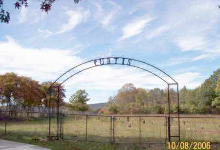 *CURTIS CEMETERY ENTRANCE,  - Newton County, Arkansas |  *CURTIS CEMETERY ENTRANCE - Arkansas Gravestone Photos