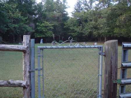 *CURTIS CEMETERY GATE,  - Newton County, Arkansas |  *CURTIS CEMETERY GATE - Arkansas Gravestone Photos
