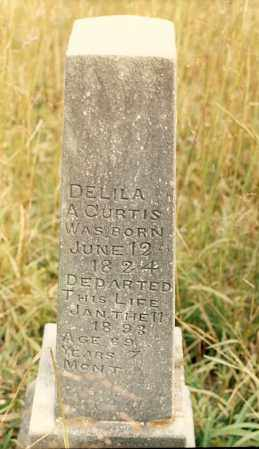 CURTIS, DELILA A. - Newton County, Arkansas | DELILA A. CURTIS - Arkansas Gravestone Photos