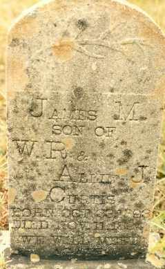 CURTIS, JAMES - Newton County, Arkansas | JAMES CURTIS - Arkansas Gravestone Photos