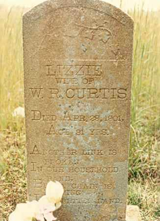 CURTIS, LIZZIE - Newton County, Arkansas | LIZZIE CURTIS - Arkansas Gravestone Photos